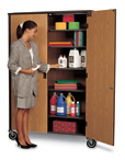 Mobile Teacher Storage Closet